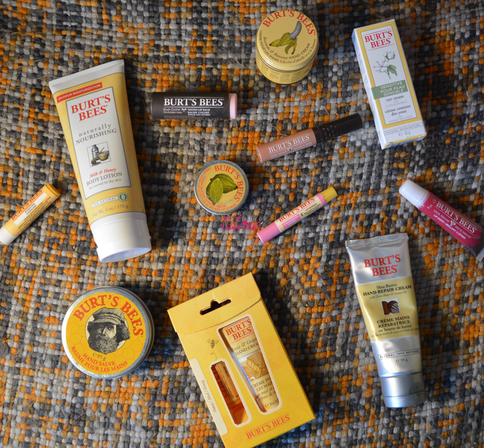 An Introduction To Burt's Bees