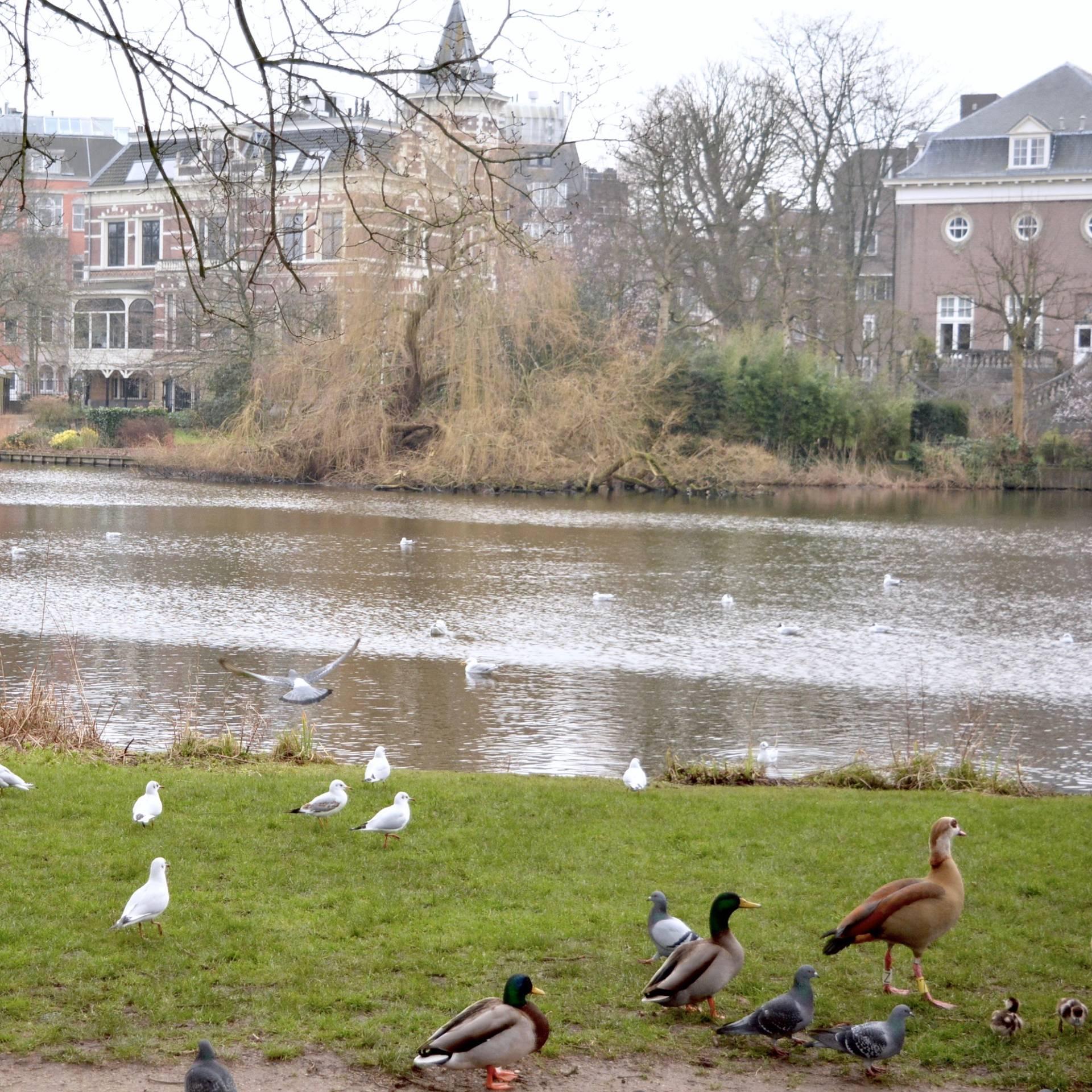 Long-Weekend-In-Amsterdam-26