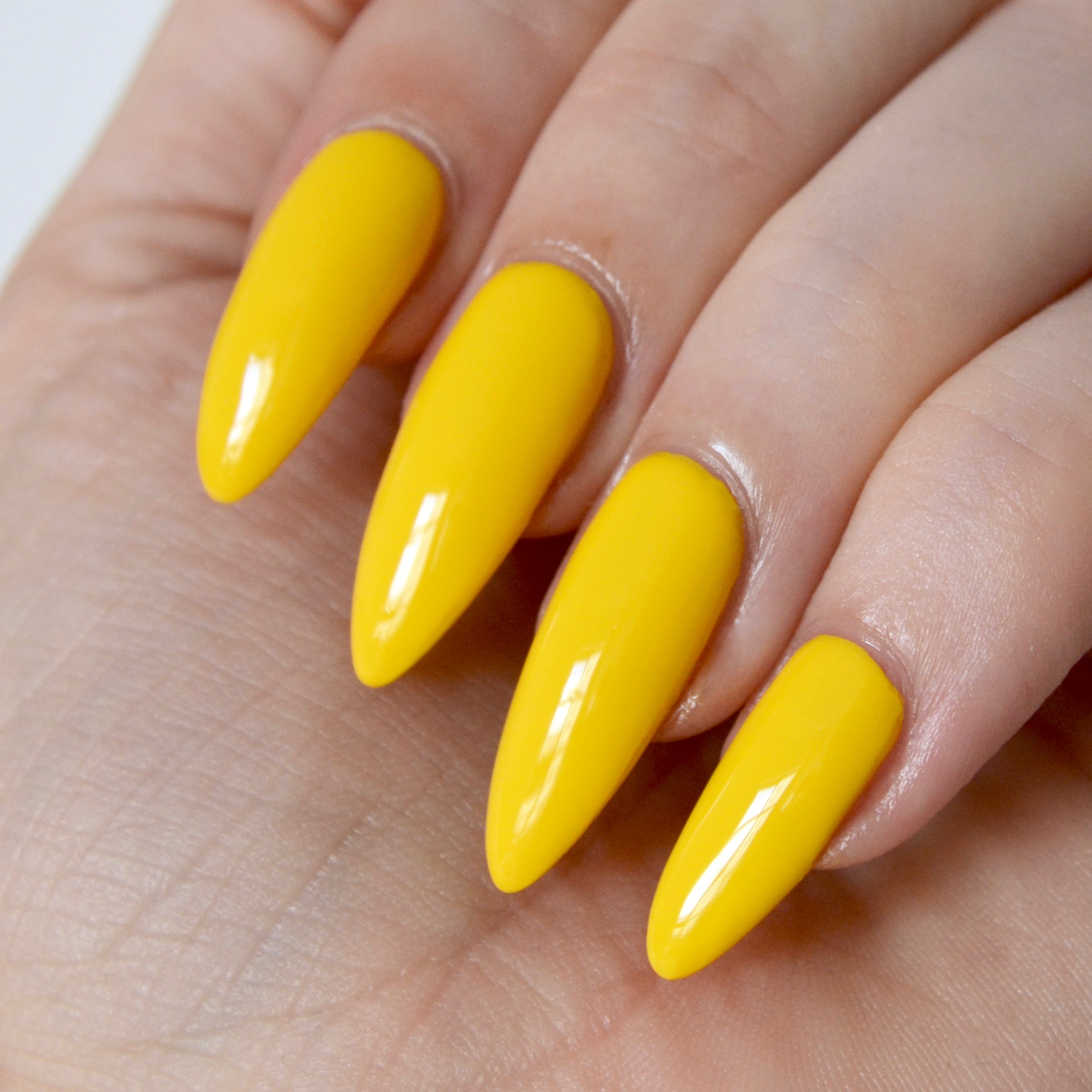 jessica-prime-collection-yellow-swatches - talonted lex